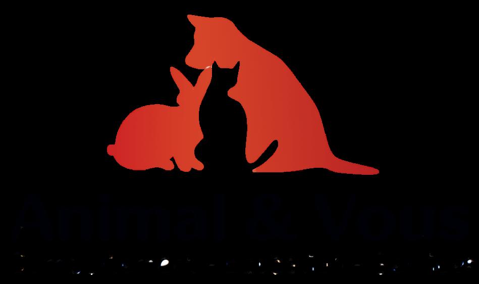 logo A&V sans fond.png