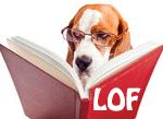 """Résultat de recherche d'images pour """"chien confirmation lof"""""""
