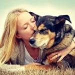 adoption-chien-spa