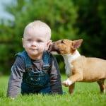 chien-meilleur-ami-enfant