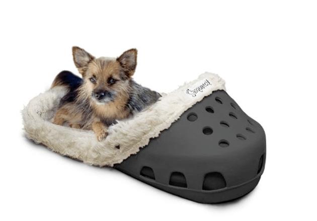 notre s lection d accessoires insolites pour chien partie 2. Black Bedroom Furniture Sets. Home Design Ideas