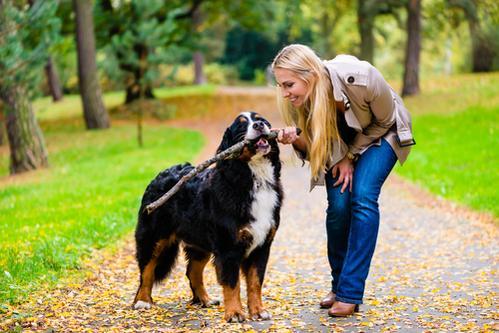 s amuser dehors avec son chien tout ce qu 39 il faut savoir sur chiens. Black Bedroom Furniture Sets. Home Design Ideas