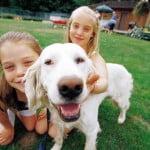 chien et enfants