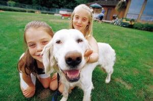 faire garder son chien en famille d accueil tout ce qu 39 il faut savoir sur chiens. Black Bedroom Furniture Sets. Home Design Ideas