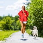 sports chien