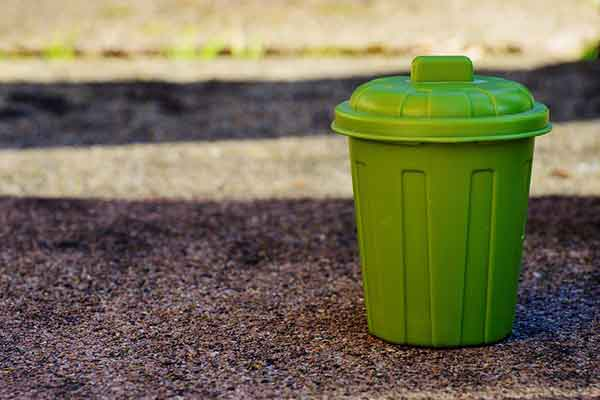 chien qui vide les poubelles