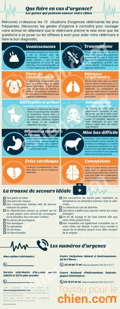 infographie-gestes-d'urgence