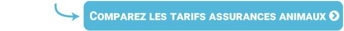 Comparez les tarifs des assurances animaux