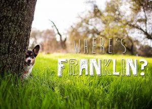 """Le jeu """"où est Franklin?"""""""