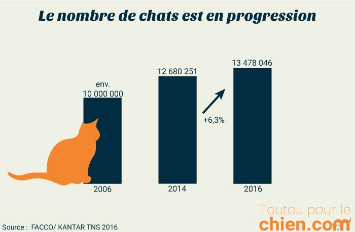 Evoluation du nombre de chats en France de 2006 à 2016