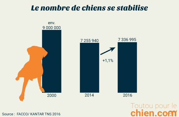 Evolution du nombre de chiens en France de 2000 à 2016