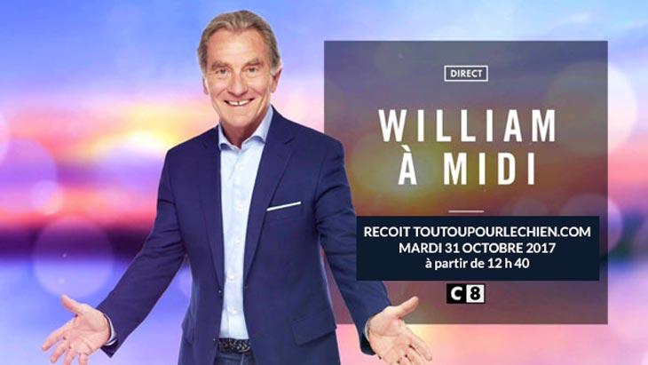 William a midi !