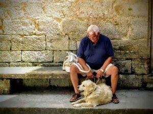 Avoir un chien réduirait la mortalité