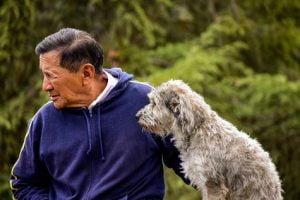 chien pour personne âgée