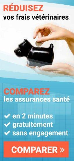 comparer les assurances santé