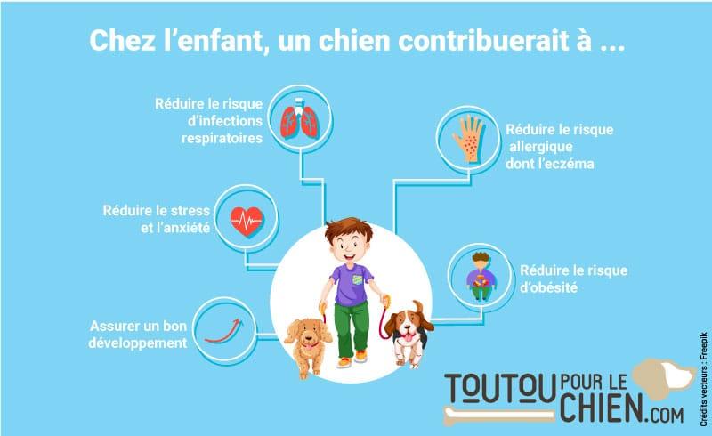 Infographie sur les bienfaits du chien sur la santé de l'enfant