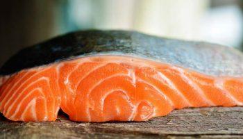 Huile de saumon pour chien